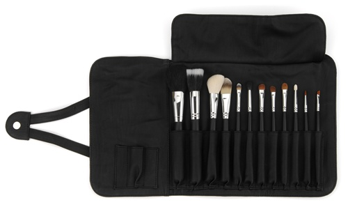 Sigma Professional Makeup brush Set