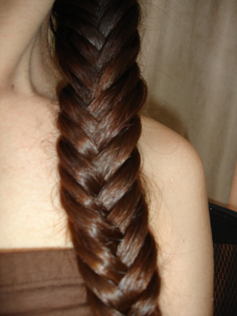 Fishtail Centipede Braid HOTD